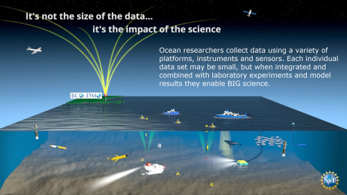 BCO-DMO manages the full range of marine ecosystem research data contributed by investigators.